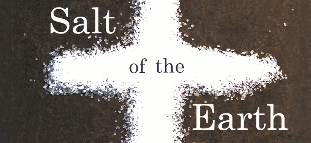 Image result for salt of the earth